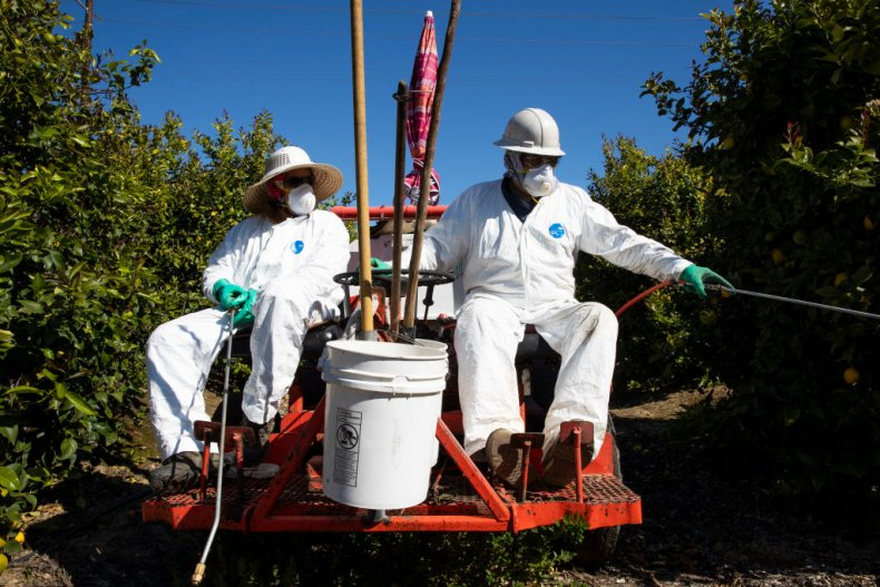 Farmworkers coronavirus