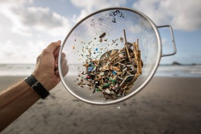 A collection of microplastics and mesoplastic debris