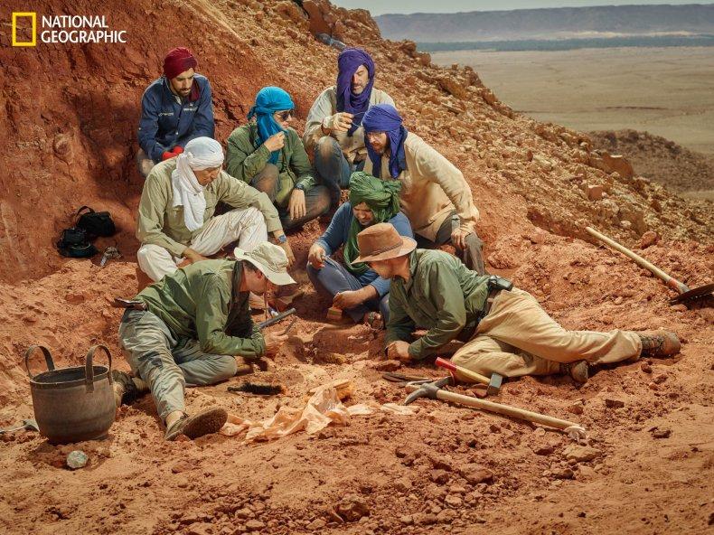 spinosaurus-expedition