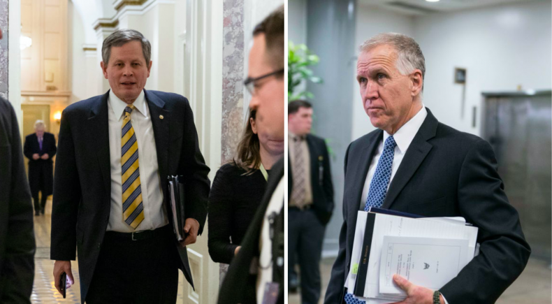 Steve Daines and Thom Tillis
