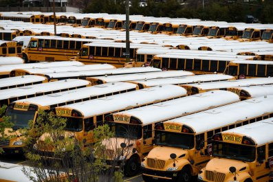 School Buses in Arlington, Virginia