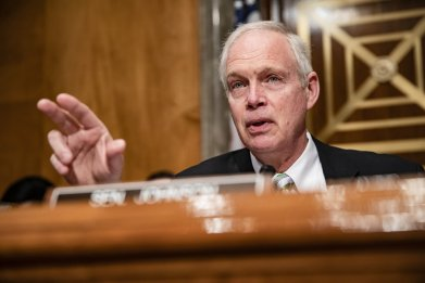 senator ron johnson biden probe
