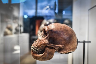 Neanderthal exhibition