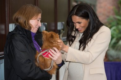 Meghan Markle Visits Mayhew Animal Rescue Charity