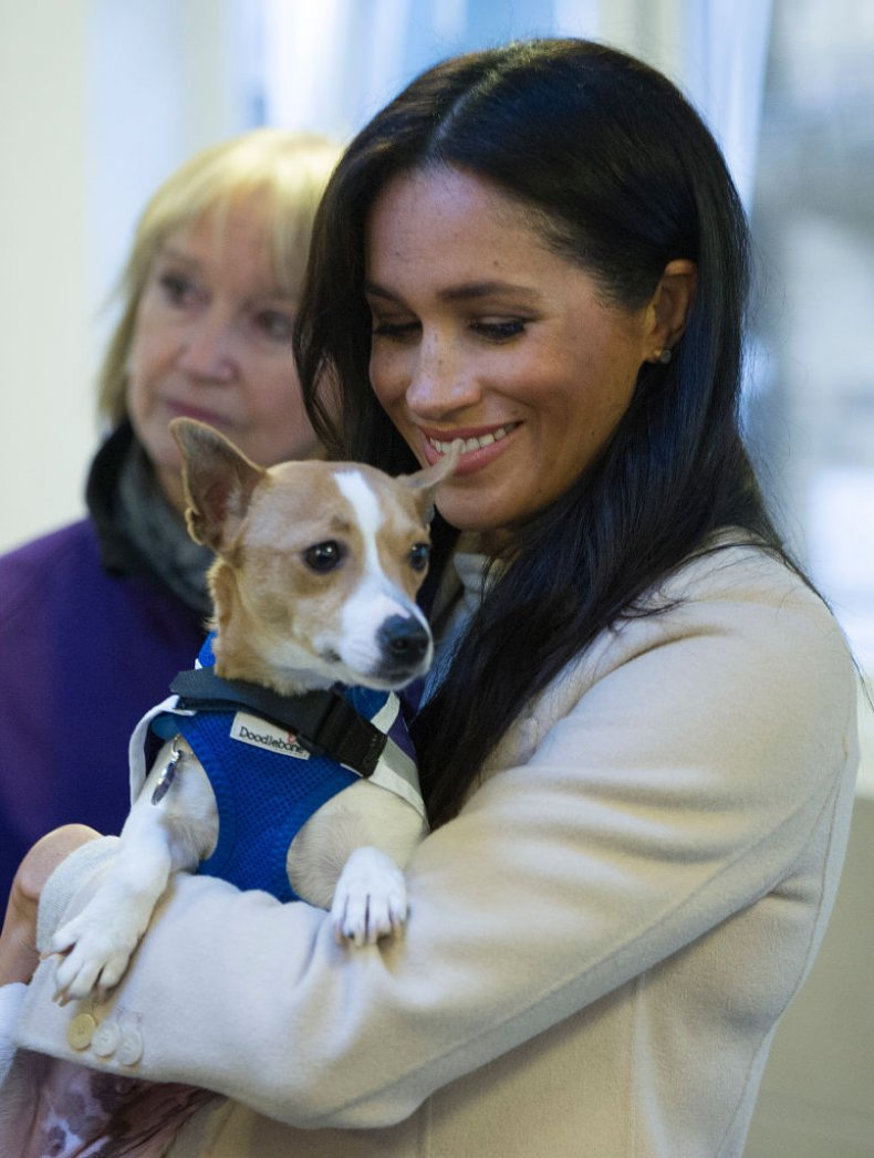 Meghan Markle at the Mayhew in London
