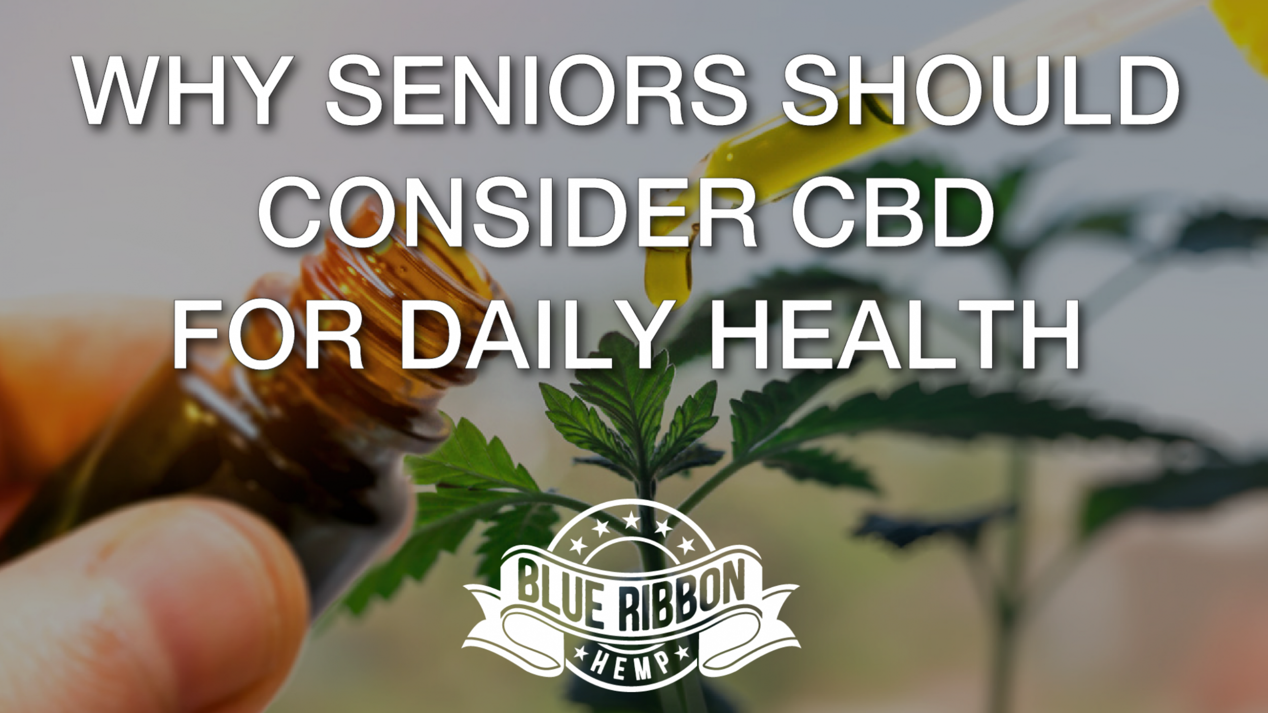Newsweek AMPLIFY - CBD for Seniors