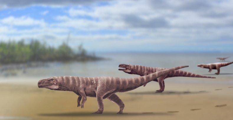 crocodile ancestors