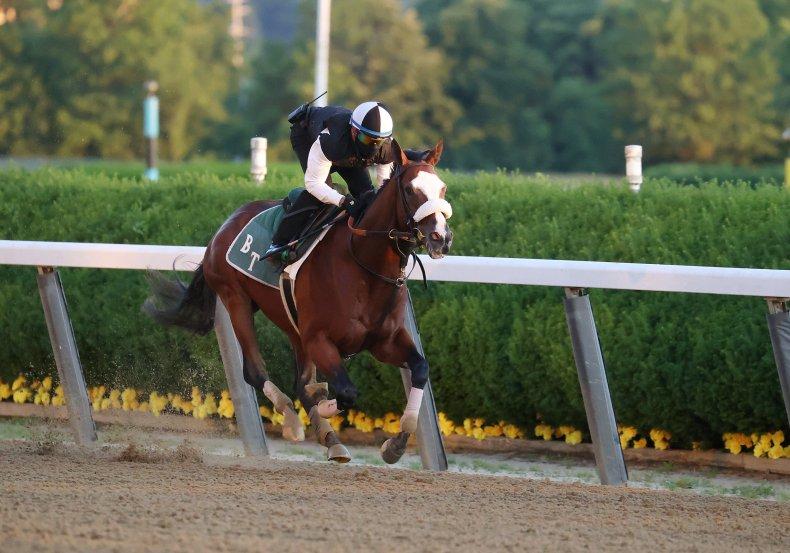 Belmont Stakes, Tiz The Law