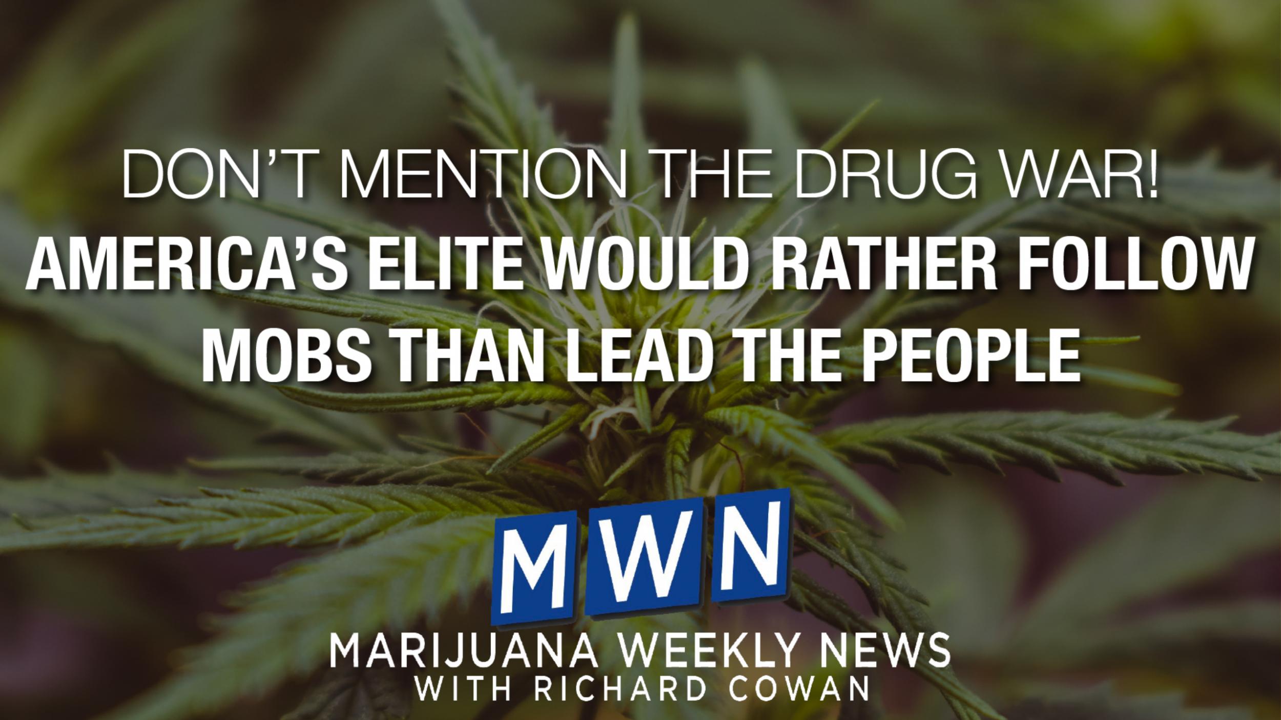 Newsweek AMPLIFY - Drug War