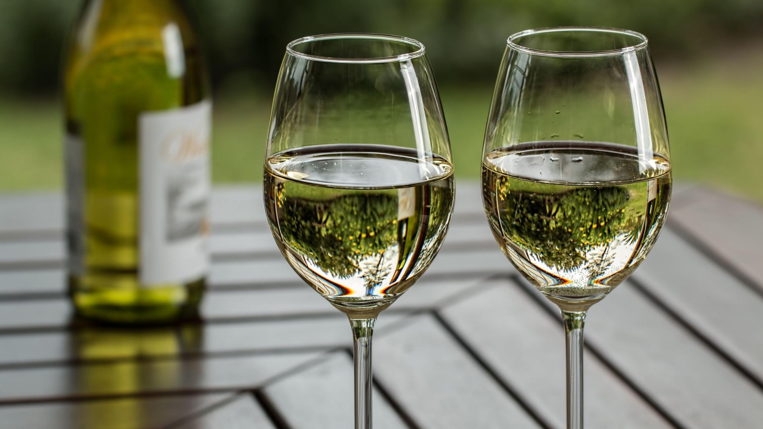 Newsweek AMPLIFY 5 Bottles For Wine Beginners