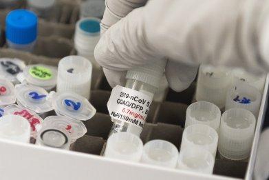 Potential Coronavirus Vaccine