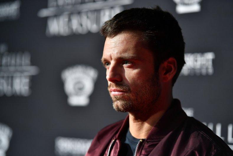 Fans Call Sebastian Stan to Act