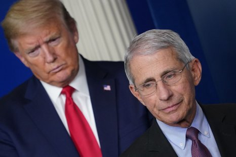 fauci lincoln project george conway trump