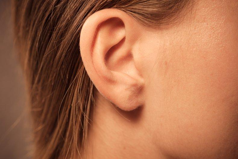ear, head, stock, getty