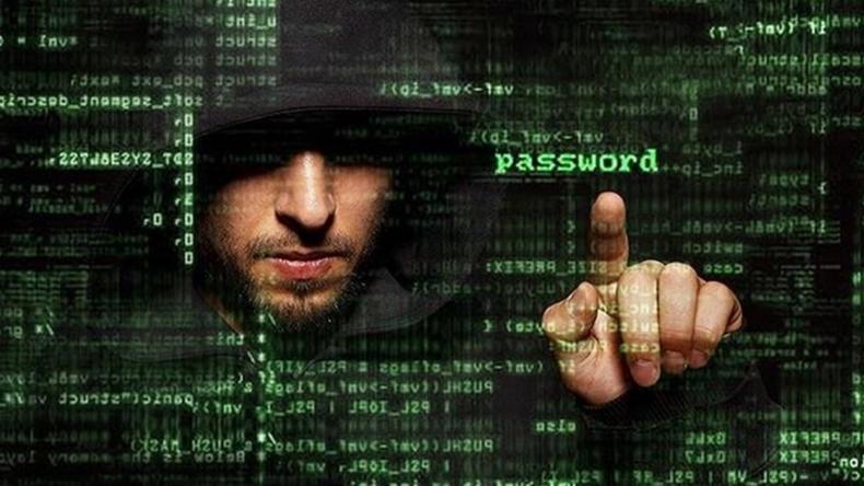 Newsweek Amplify - Internet Users