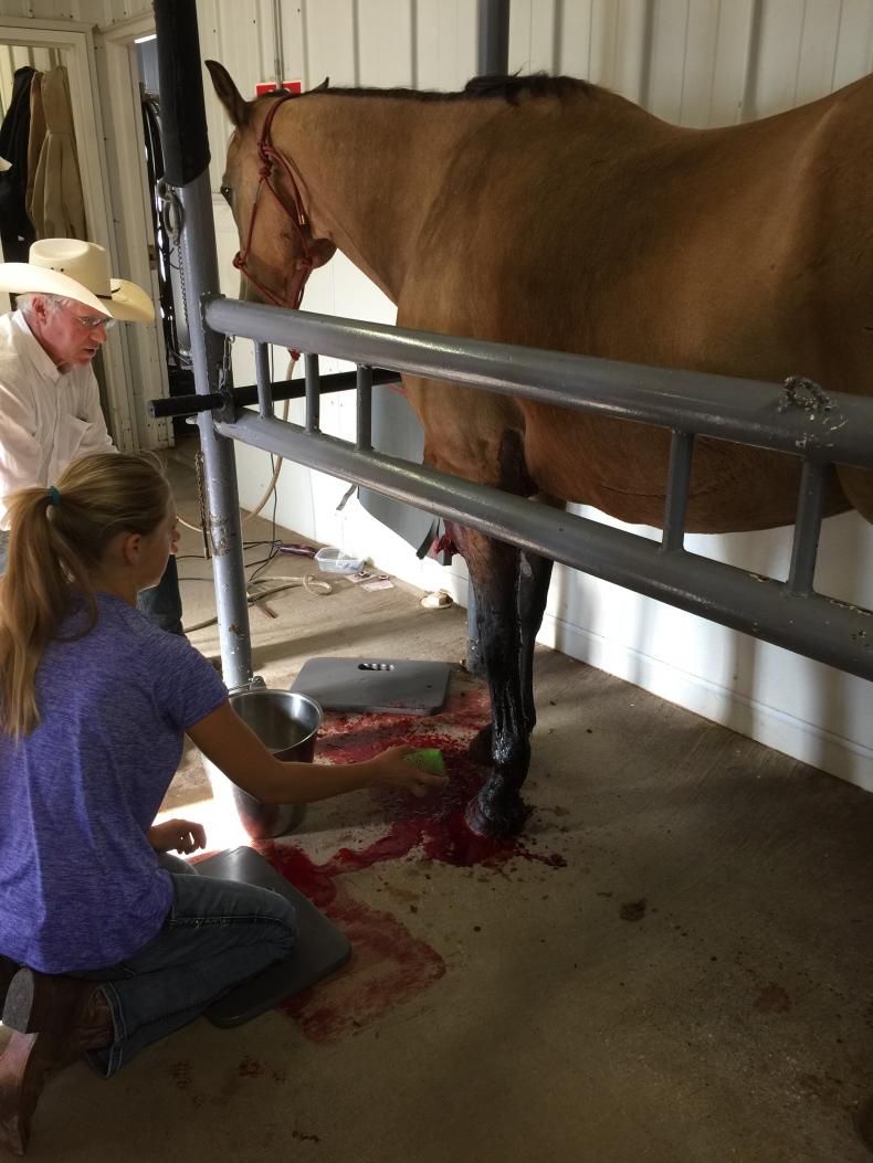 Bridget mending injury