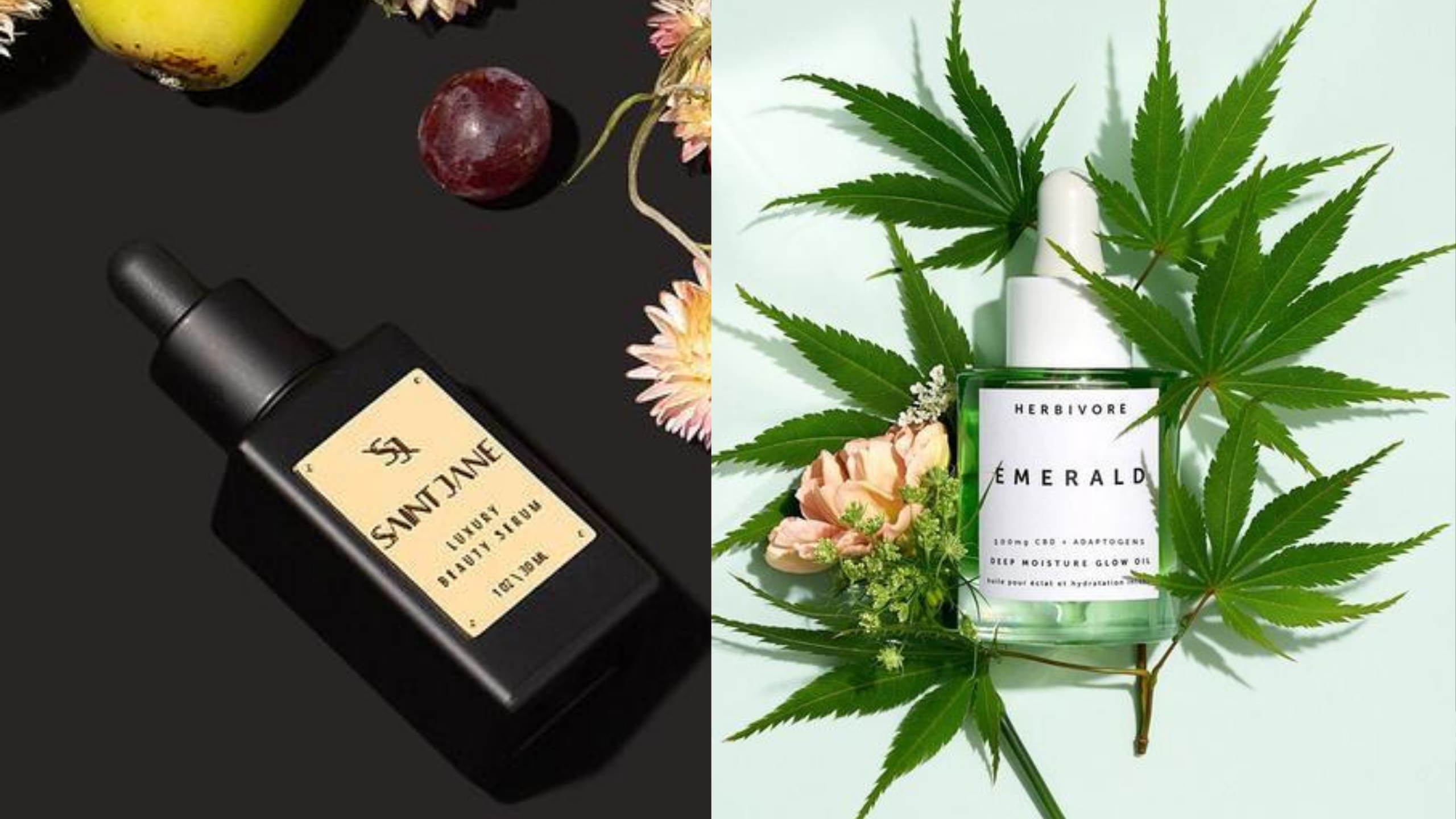 Newsweek AMPLIFY - Best CBD Anti-Aging Products