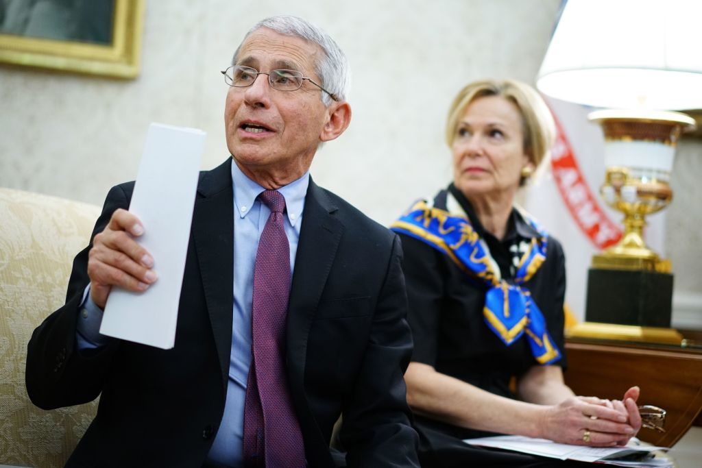 "Fauci and Deborah Birx warn Atlanta, Baltimore and 7 other major cities of ""trouble ahead"" over COVID positivity rate"
