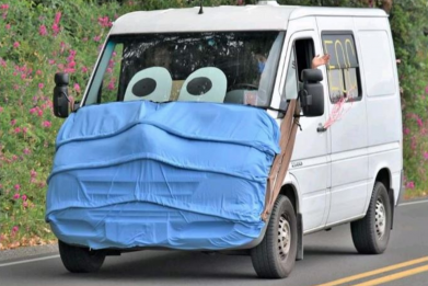 Woman Turns Van Into Covid-19 Warning