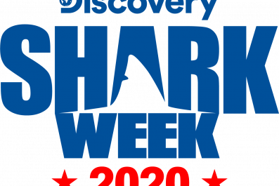 'Shark Week' 2020 Is Here—See the Lineup