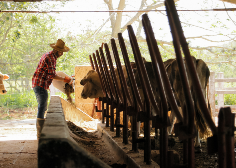 #57. Farmworkers, farm, ranch, and aquacultural animals