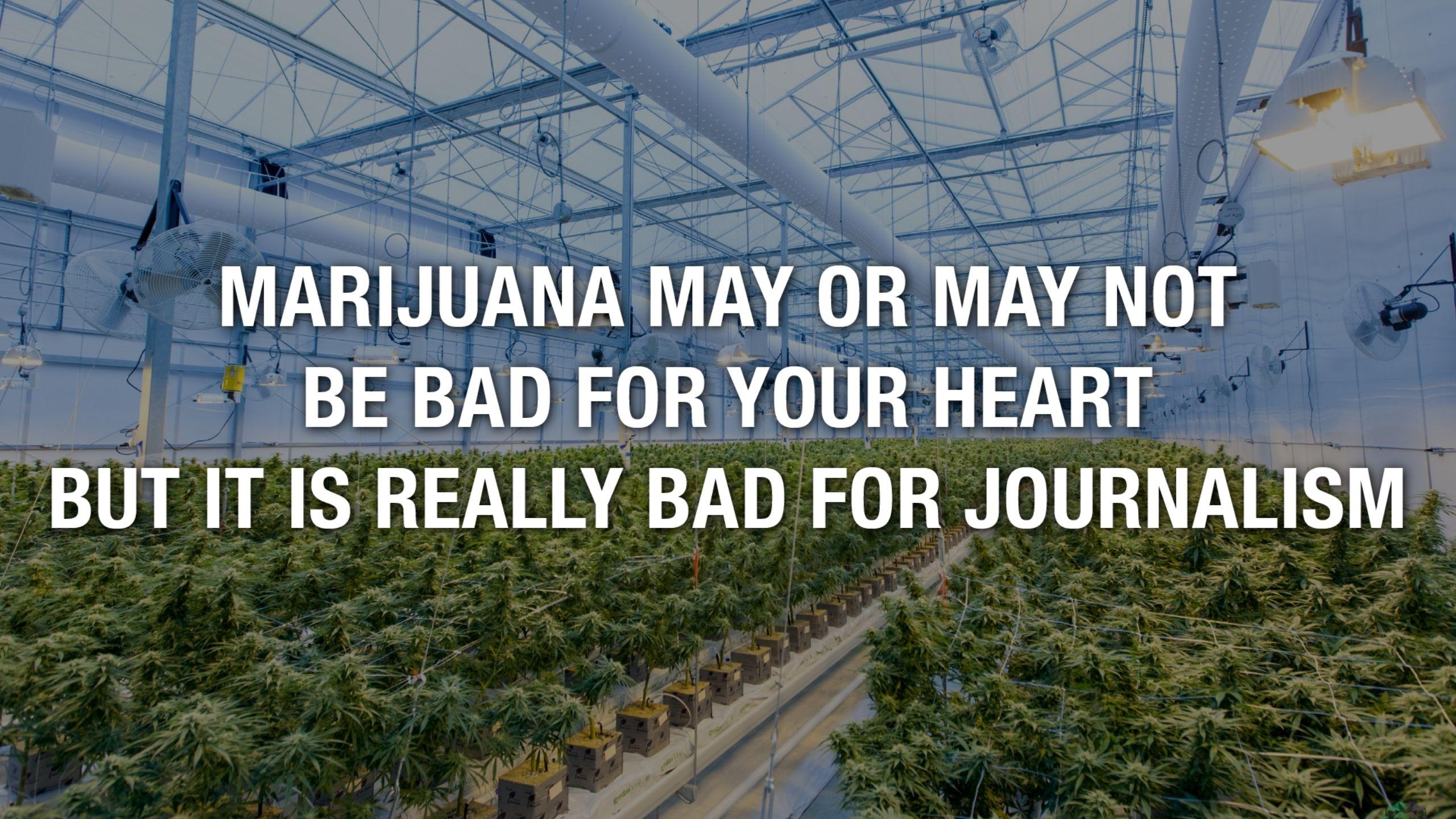 Newsweek AMPLIFY - Medical Marijuana