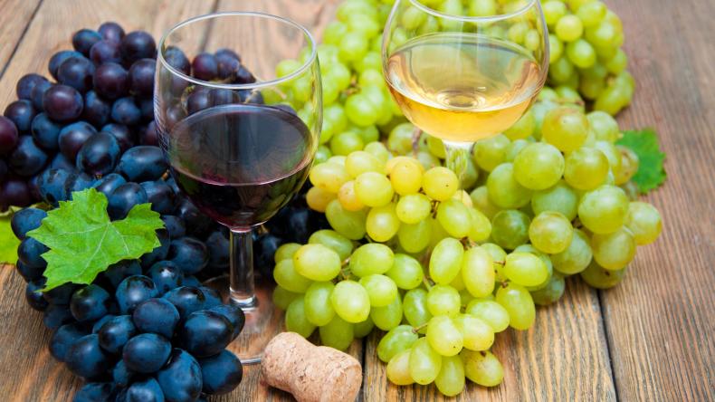 Newsweek AMPLIFY 30 Fun Facts About Wine