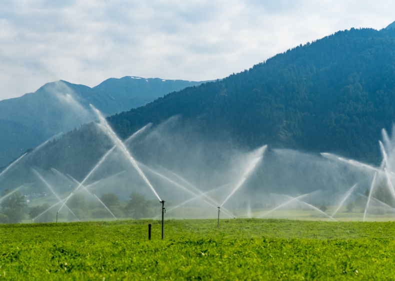 Water requirements vary among crops