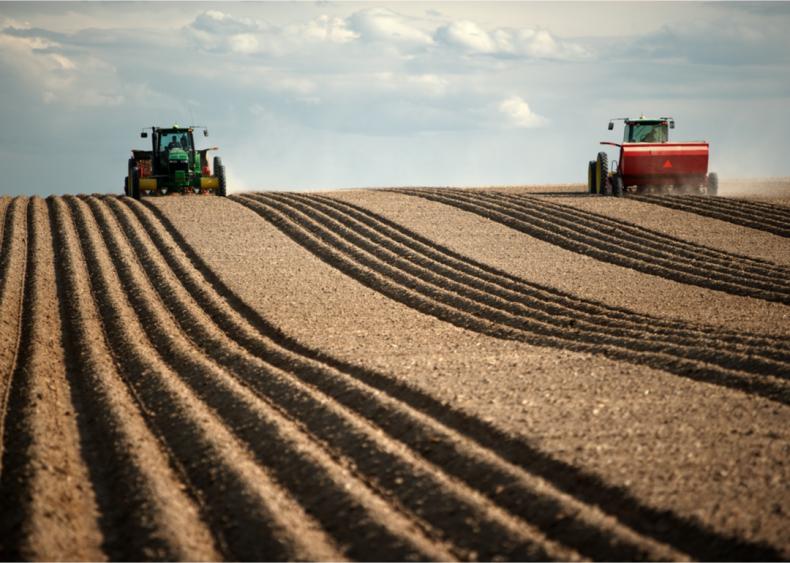 Single-crop farms have environmental downsides