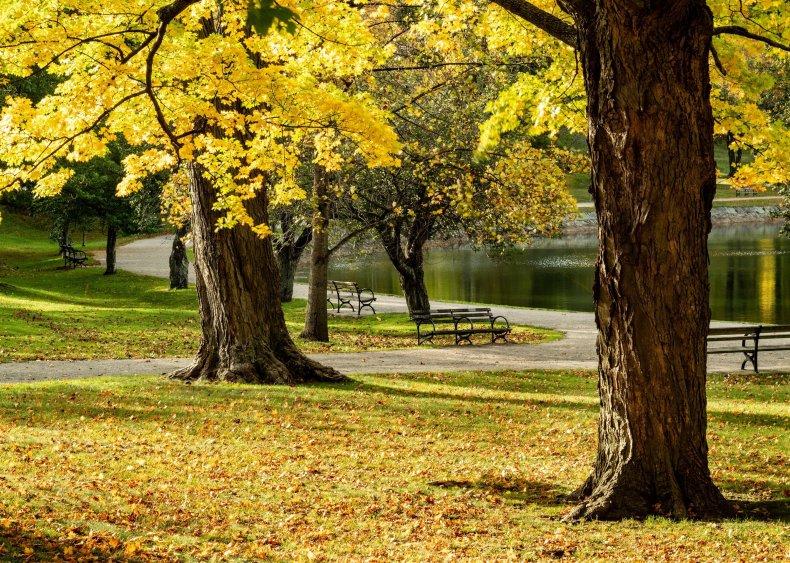 Massachusetts: Brookline