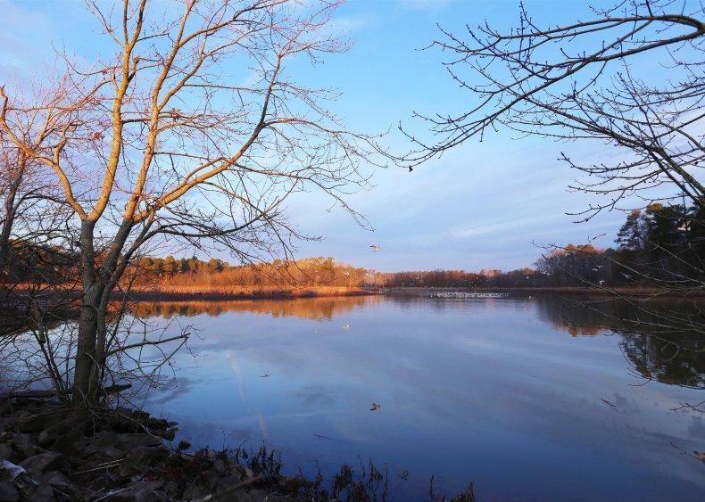 North Carolina: Morrisville