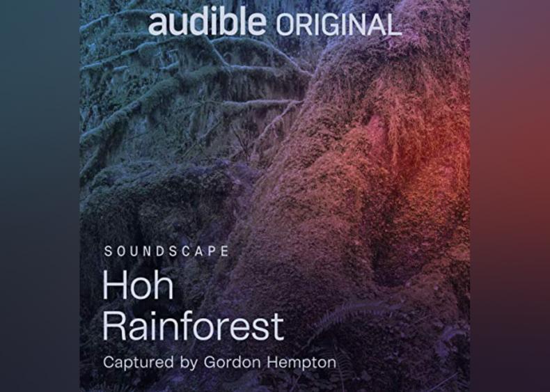 #14. Hoh Rainforest