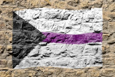 demisexuality, asexuality, demisexual flag