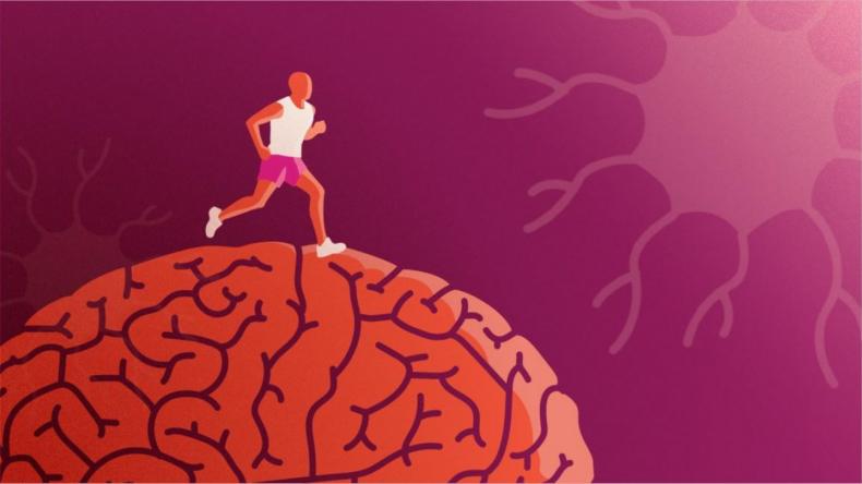 Newsweek Amplify - Brain Health