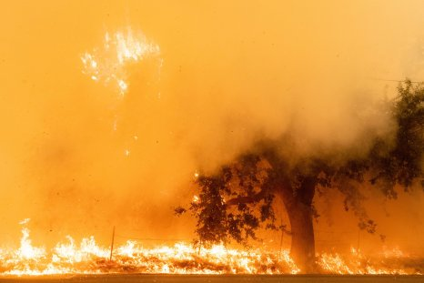 Wildfires Smoke California