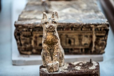 How Mummified Pets in Ancient Egypt Look