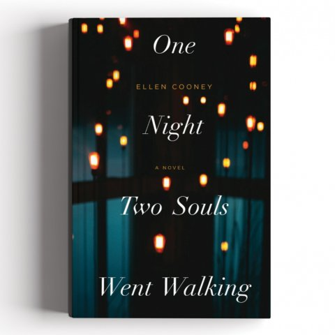 CUL_Books_Fiction_One Night Two Souls Went Walking