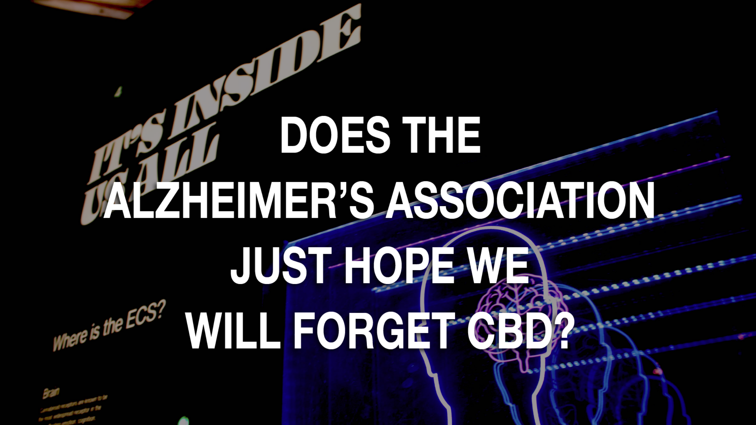 Newsweek AMPLIFY - Does The Alzheimer's Association