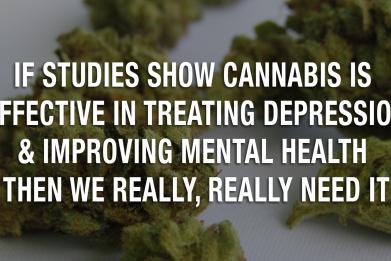 Newsweek AMPLIFY - If Studies Show Cannabis