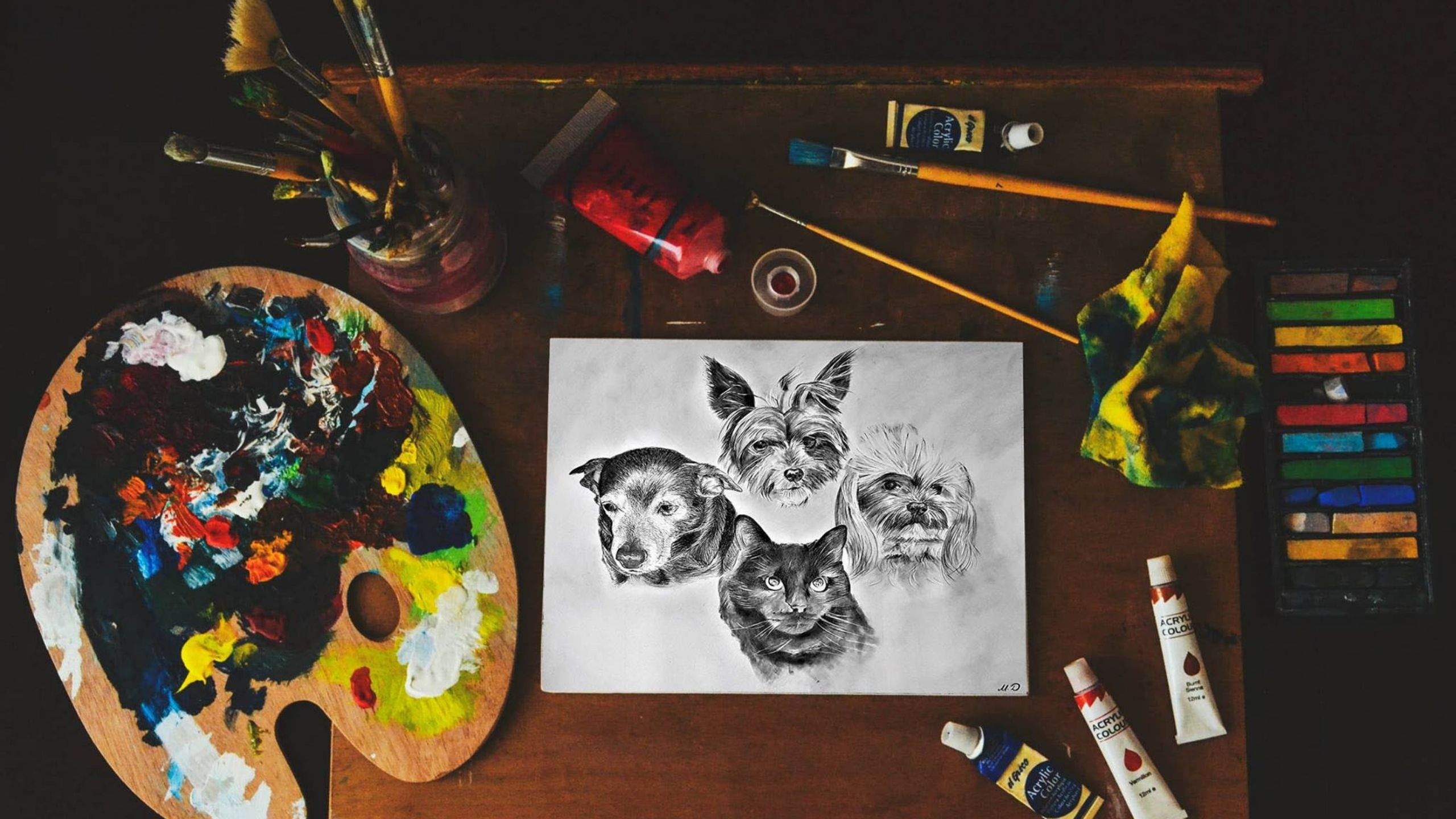 Newsweek AMPLIFY One-of-a-Kind Gift for Pet Lovers