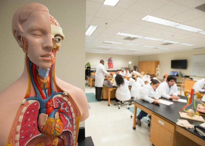 #38. Health specialties teachers, postsecondary