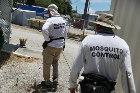 Mosquito Control Florida