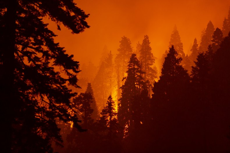 Getty Images California Fire