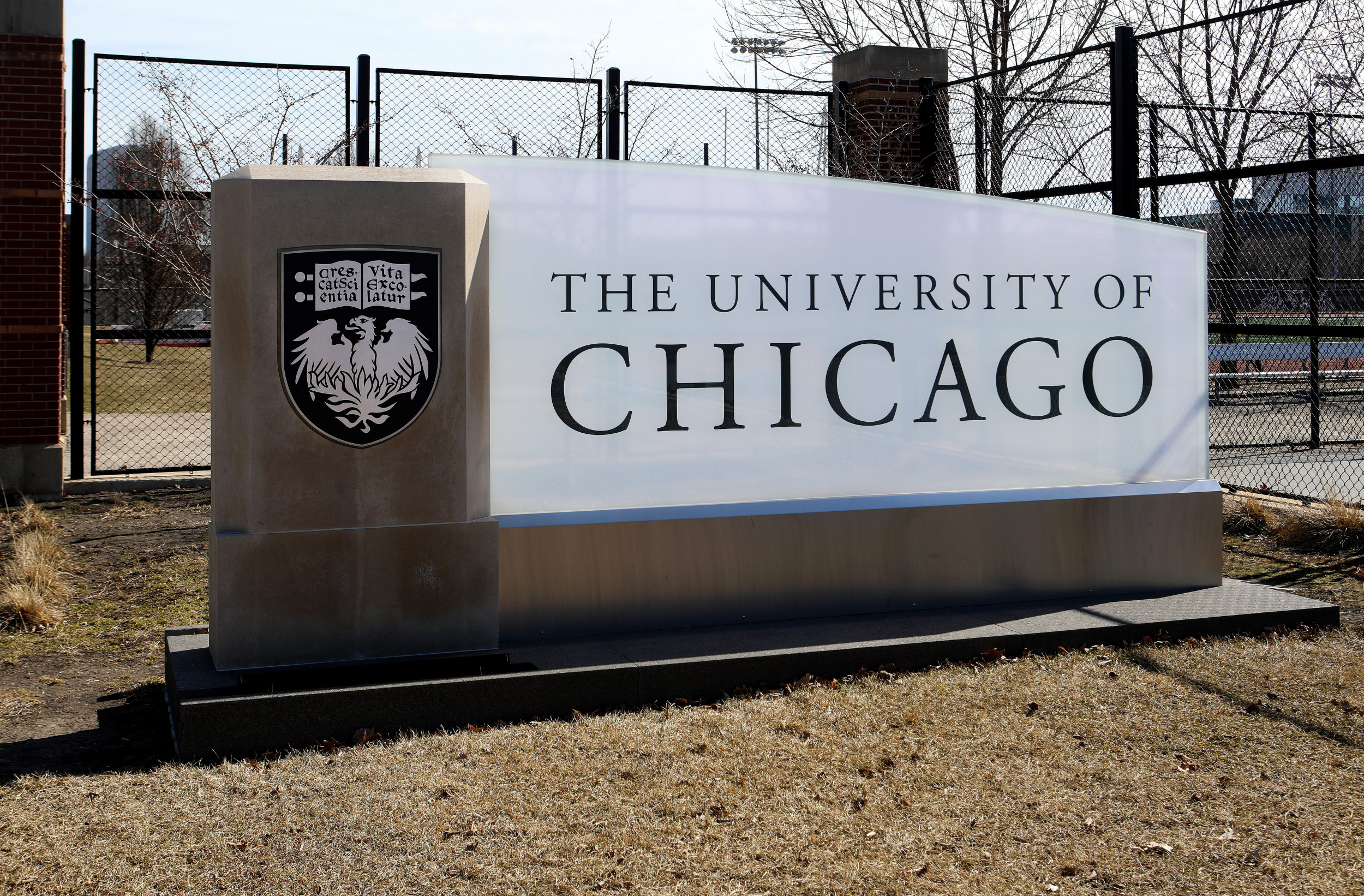 Want a graduate english degree from University of Chicago? This year you'll be in Black studies too