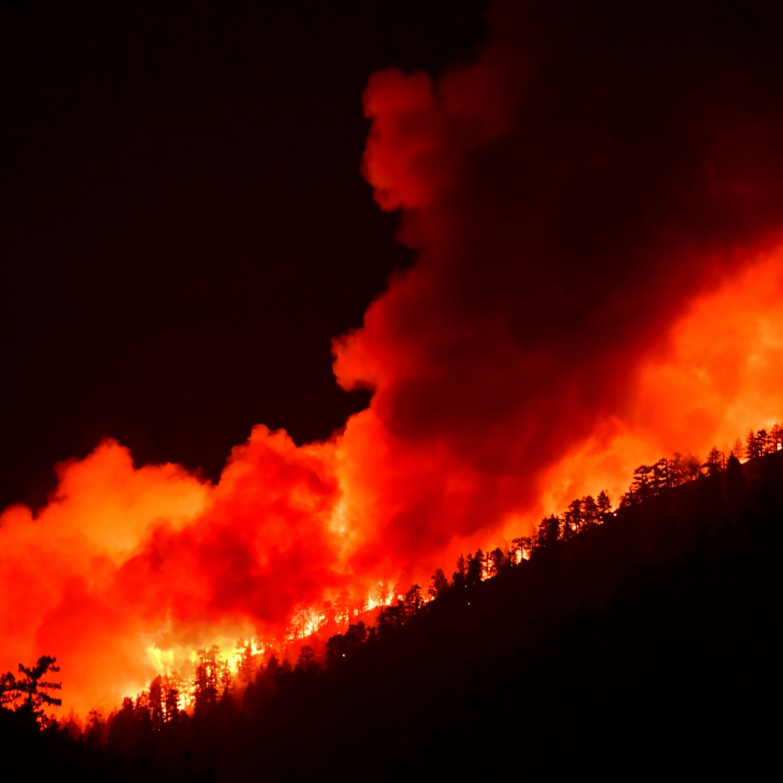 California Fire Map Update As Bobcat Blaze Exceeds Critical Thresholds For Large Fire Growth