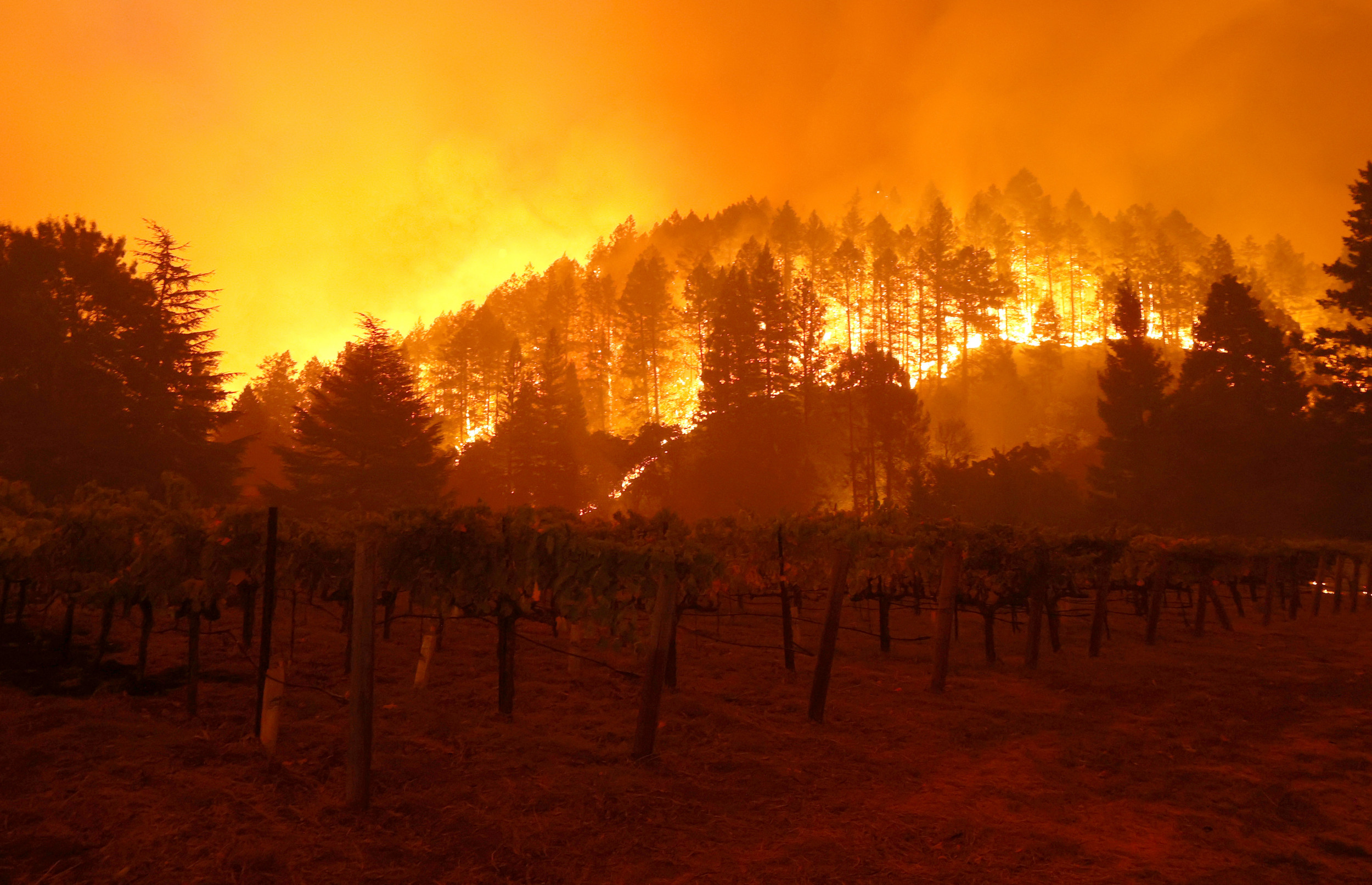 Photos: Bighorn Fire grows to more than 37,000 acres