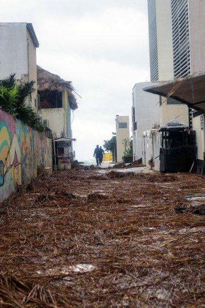 Hurricane Delta Debris Downed Braches
