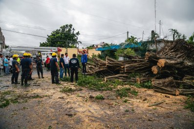 Hurricane Delta Workers Talk Debris Fallen Tree