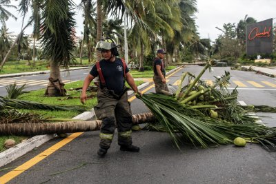 Hurricane Delta Officials Clear Palm Tree Cancun