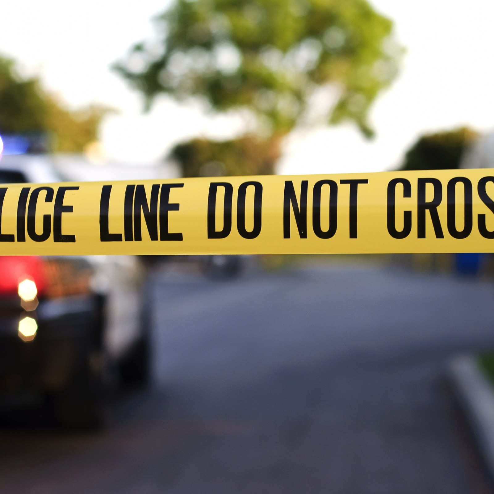 Maryland Bus Driver Shot To Death After Turning Passenger Away Police Say Want to know more about working here? maryland bus driver shot to death after